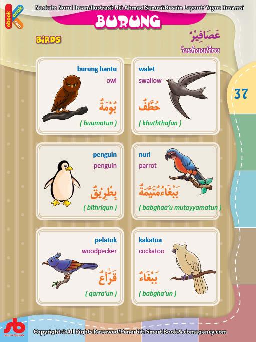 download gratis ebook pdf kamus bergambar 3 bahasa indonesia, inggris, arab nama-nama burung (1)