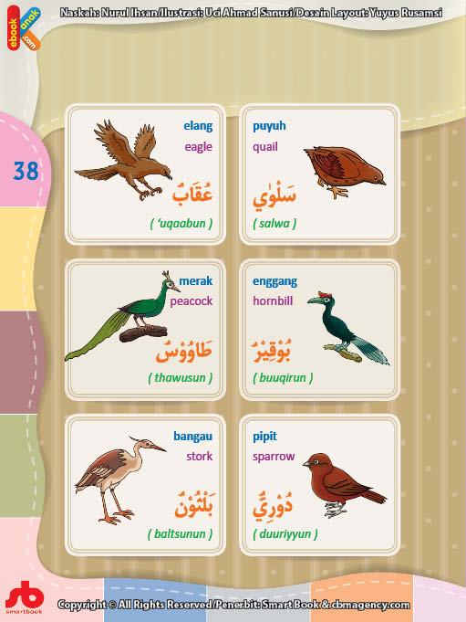 download gratis ebook pdf kamus bergambar 3 bahasa indonesia, inggris, arab nama-nama burung (2)