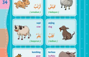 download gratis ebook pdf kamus bergambar 3 bahasa indonesia, inggris, arab nama-nama hewan peliharaan (2)