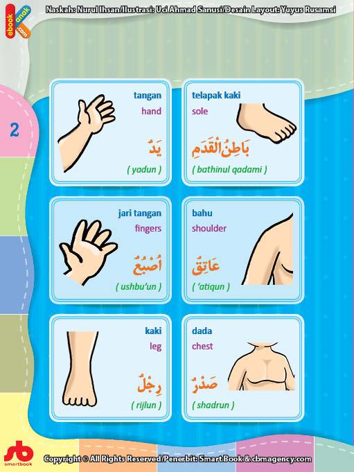 Kamus Bergambar Anak Muslim Tubuh Manusia Bahasa Indonesia Inggris Arab 2 Ebook Anak