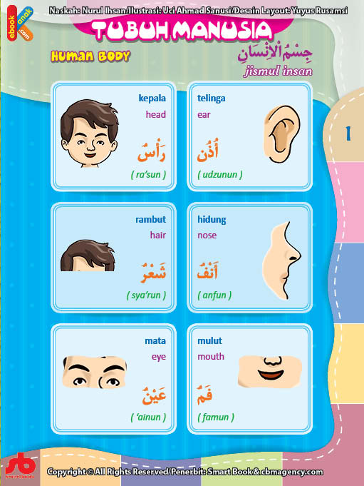 download gratis ebook pdf kamus bergambar 3 bahasa indonesia, inggris, arab tubuh manusia