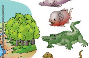 ilustrasi-rahasia-keajaiban-bumi-amazon-sungai-terbesar-di-bumi2