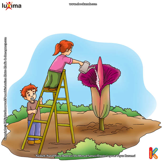 ilustrasi-rahasia-keajaiban-bumi-bunga-bangkai-bunga-tertinggi-di-dunia.jpg