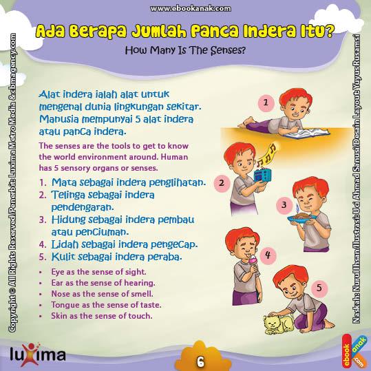 Gambar Panca Indera Untuk Anak Tk Tempat Berbagi Gambar