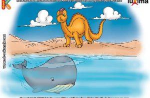 ilustrasi seri sains anak mengenal alam semesta rahasia keajaiban lautan, Kenapa Paus Biru Disebut Hewan Terbesar di Dunia