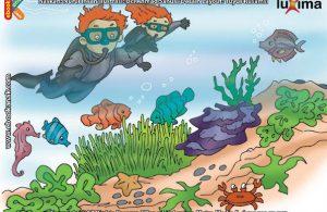 ilustrasi seri sains anak mengenal alam semesta rahasia keajaiban lautan, Tumbuhan Apa Saja yang Bisa Tumbuh di Laut