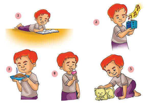 Gambar Panca Indera Untuk Anak Paud Tempat Berbagi Gambar