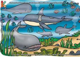 ilustrasi rahasia keajaiban air, Tanpa Air dan Oksigen Apakah Ikan Masih Bisa Bernapas