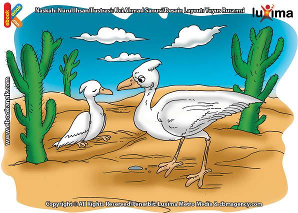 ilustrasi rahasia keajaiban hewan, Apakah Nama Burung Terberat di Dunia