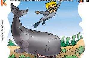 ilustrasi rahasia keajaiban hewan, Apakah Nama Hewan Bergigi dan Berotak Terbesar di Dunia