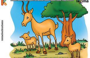 ilustrasi-rahasia-keajaiban-hewan-Apakah-Nama-Hewan-Bertanduk-Terbesar