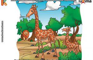 ilustrasi rahasia keajaiban hewan, Apakah Nama Hewan Paling Tertinggi di Dunia