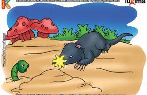 ilustrasi rahasia keajaiban hewan, Apakah Nama Hewan Pemangsa Tercepat di Dunia