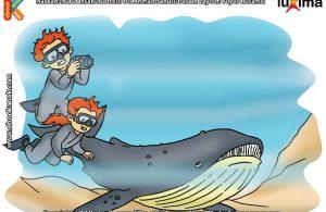 ilustrasi rahasia keajaiban hewan, Apakah Nama Hewan Terbesar di Dunia