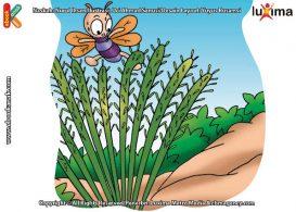 ilustrasi rahasia keajaiban tumbuhan, Kenapa Tumbuhan Punggung Api Disukai Serangga