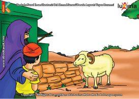 ilustrasi seri mengenal islam sejak usia dini mengenal nabi dan rasul, Apa yang Allah Berikan pada Nabi Ismail atas kepatuhannya Berkurban