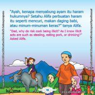 seri belajar islam sejak usia dini Mengenal Hukum Allah, Kenapa Menyabung Ayam Itu Diharamkan