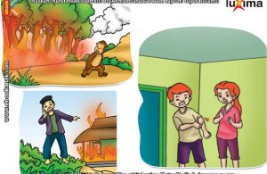 ilustrasi rahasia keajaiban api, Hati-Hati! Jangan Main Api Sembarangan!