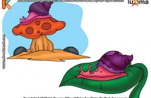 ilustrasi rahasia keajaiban makhluk hidup, Apakah Manfaat Cangkang Bagi Bekicot dan Siput