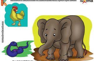 ilustrasi rahasia keajaiban makhluk hidup, Apakah Semua Hewan Memiliki Kaki
