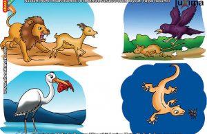 ilustrasi rahasia keajaiban makhluk hidup, Apakah Singa Hanya Suka Makan Daging Segar Saja