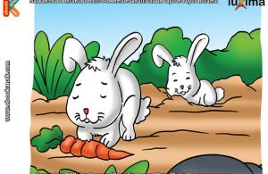 ilustrasi rahasia keajaiban makhluk hidup, Kenapa Kelinci Suka Menggali Tanah