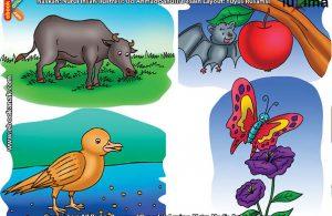 ilustrasi rahasia keajaiban makhluk hidup, Tumbuhan Apa Saja yang Suka Dimakan Hewan Herbivora
