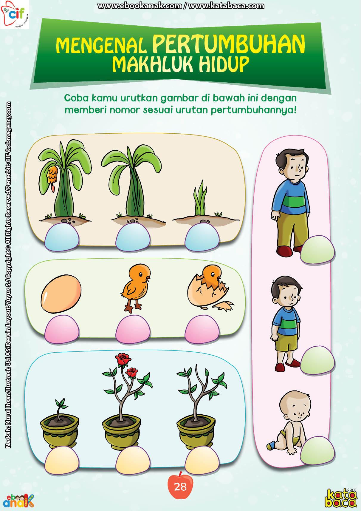 baca buku online brain games fun sains36 Mengenal Pertumbuhan dan Perkembangan Makhluk Hidup