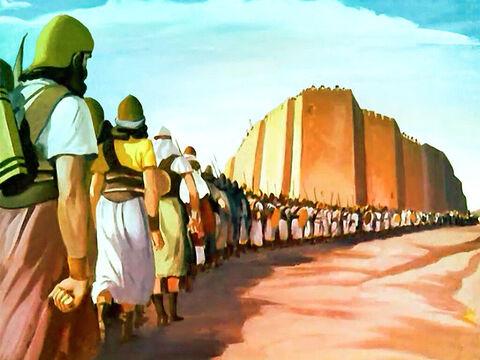 Auj bin Unuq dan Nabi Musa AS