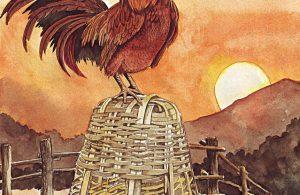 Ayam Jago yang Pintar Berkokok Membangunkan Kita Setiap Pagi