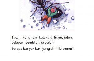 Baca Online Buku Hitung dan Katakan_008