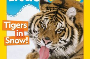 Download Majalah Digital National Geographic Little Kids Januari-Februari 2020