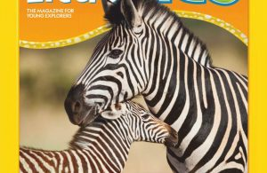 Download Majalah Digital National Geographic Little Kids Maret-April 2019