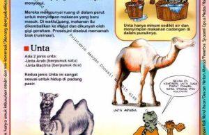 Ebook Legal dan Printable Aku Anak Cerdas Dunia Hewan 1, Binatang Pemakan Daging (10)