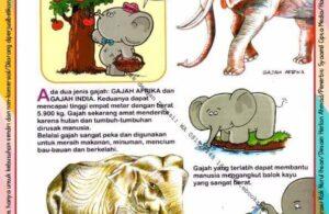 Ebook Legal dan Printable Aku Anak Cerdas Dunia Hewan 1, Gajah (16)