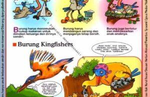Ebook Legal dan Printable Aku Anak Cerdas Dunia Hewan 2, Apa yang Burung Kerjakan (7)