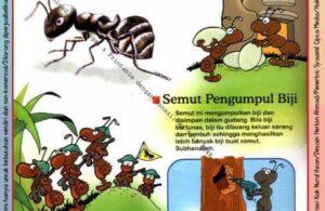 Ebook Legal dan Printable Aku Anak Cerdas Dunia Hewan 2, Semut Pengumpul Biji (17)