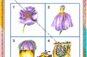 Ebook Legal dan Printable Aku Anak Cerdas Serangga dan Tumbuhan 2, dari Bunga menjadi Biji (18)
