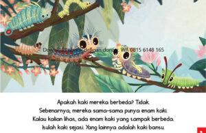 Ebook Sama atau Berbeda3