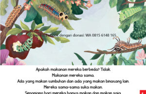 Ebook Sama atau Berbeda5