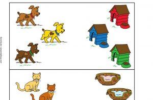 Mengenal Rumah Hewan