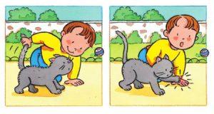 Jangan Memegang Ekor Belakang Kucing