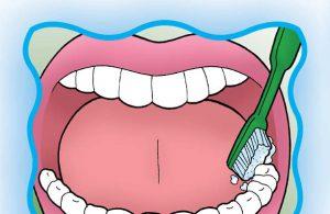 Karang Gigi Mudah Dicegah Jika Kamu Rajin Melakukan Hal Ini (20)