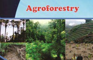 Kelas_12_SMK_Agroforestry_5_001