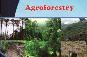 Kelas_12_SMK_Agroforestry_6_001