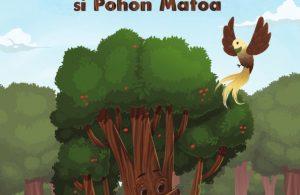 Mato si Pohon Matoa1