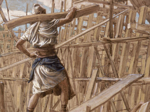 Nabi Nuh Harus Mengangkut Pohon untuk Membuat Bahtera