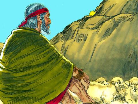 Keluhan Nabi Musa Ketika Sakit Gigi