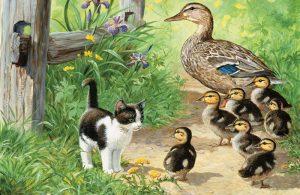 Pusi Kucing dan Beki Bebek