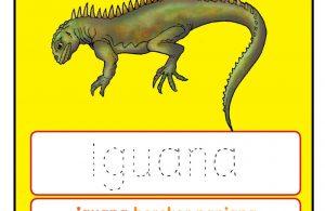 Worksheets Alfabet Ii Iguana